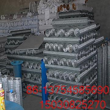 galvanized wire mesh  1
