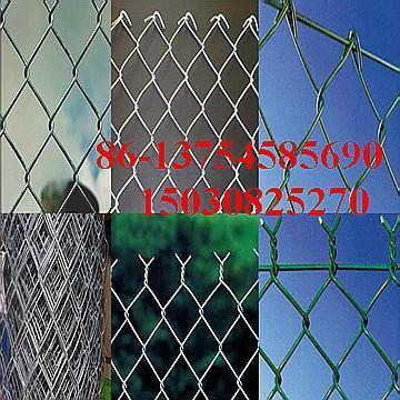 ga  anized wire mesh  3