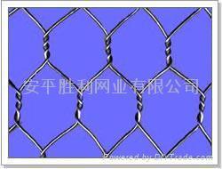 Hexagonal wire mesh  4