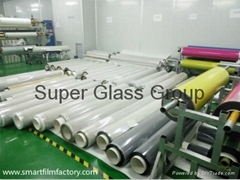Switchable Glass with 48