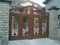 木紋智能庭院門