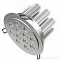 12*3W power Bridgelux led down light