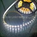 SMD3528 60leds/M smd led strip lightings