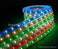 SMD5050 30leds/M led rope lights 5