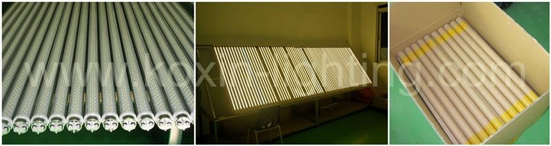 T8日光燈 2