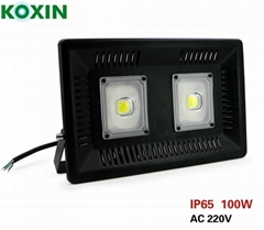 100W LED driverless floodlight, led floodlight, COB floodlight, LED street light