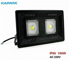 100W LED driverless floodlight, led