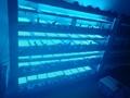 WIFI 藍牙 光療燈 11