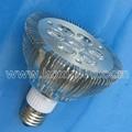 CREE led可控硅調光燈 4