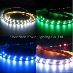 SMD5050 30leds/M led rop