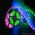 SMD5050 30leds/M led rope lights 2