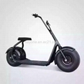 2016 the Most Fashionable Citycoco 2 Wheel Electric Scooter