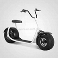 2016 the Most Fashionable Citycoco 2 Wheel Electric Scooter 2