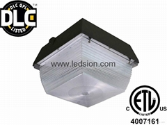 DLC LED Canopy Light 60W 80W 100W Outdoor Lighting IP65 CREE Chips