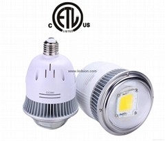 E40 HIGHBAY LED LIGHT SOURCE BULB 20W Best Manufacturer/Supplier in China