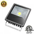 50W LED FLOODLIGHT CREE IP65 ETL SAA 5