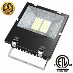 150W LED Outdoor Lamp CREE LED Floodlight ETL
