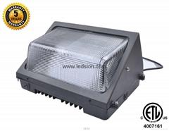 ETL CREE LED Meanwell driver LED Wallpack 100W