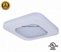 UL 100w led Canopy light usa