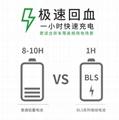 宝力晟12V100AH卷绕电池房车专用房车电瓶低温畜电池 5