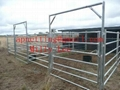 steel Wrangler horse Panels,sheep round