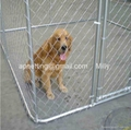 lowes dog kennel runs, outdoor dog run fence panels 4