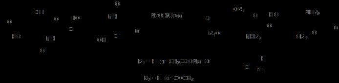 温敏性可降解甲壳素水凝胶 2