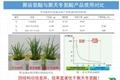 聚谷氨酸肥料 3