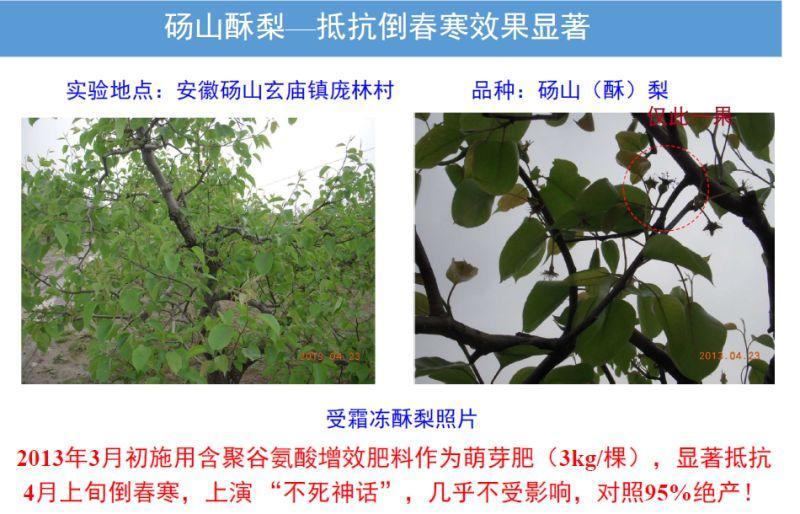 聚谷氨酸肥料 4
