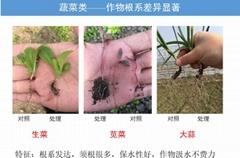 聚谷氨酸肥料