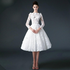 Elegent  T Length Lace Tulle Wedding Dress With Sleeves XLF006