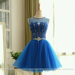 Short Royal Blue Tulle Beading Wedding Dress Party Dress CK33