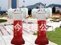 气模--摩托柱/水管柱/猪头柱/彩灯柱 2