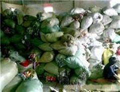 垃圾环保回收处置