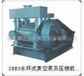 供应2BE3系列水环真空泵及压