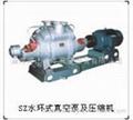 供应SZ系列水环式真空泵及压缩