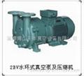 供应天体2BV水环式真空泵及压缩机  1