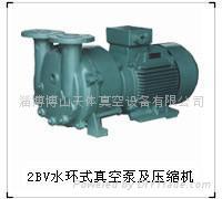 供应天体2BV水环式真空泵及压缩机