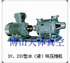 供应天体SY/2SY系列水环式压缩机