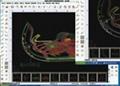瑞洲科技-鞋樣級放擴縮軟件 箱包設計開版算料軟件