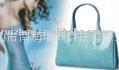 瑞洲箱包手袋样板设计CAD/CAM系统