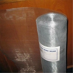 galvanzied wire mesh (Hot dipped galvanized wire mesh)