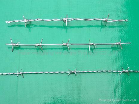 barbed razor wire 3