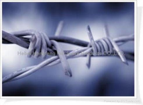 barbed razor wire 4