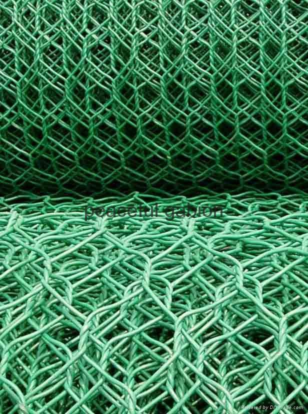 hexagonal wire mesh 3