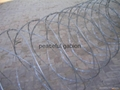 蛇腹形铁丝网