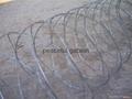 razor tape wire