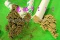 golden moxa roll/three year mugwort /bulk 5