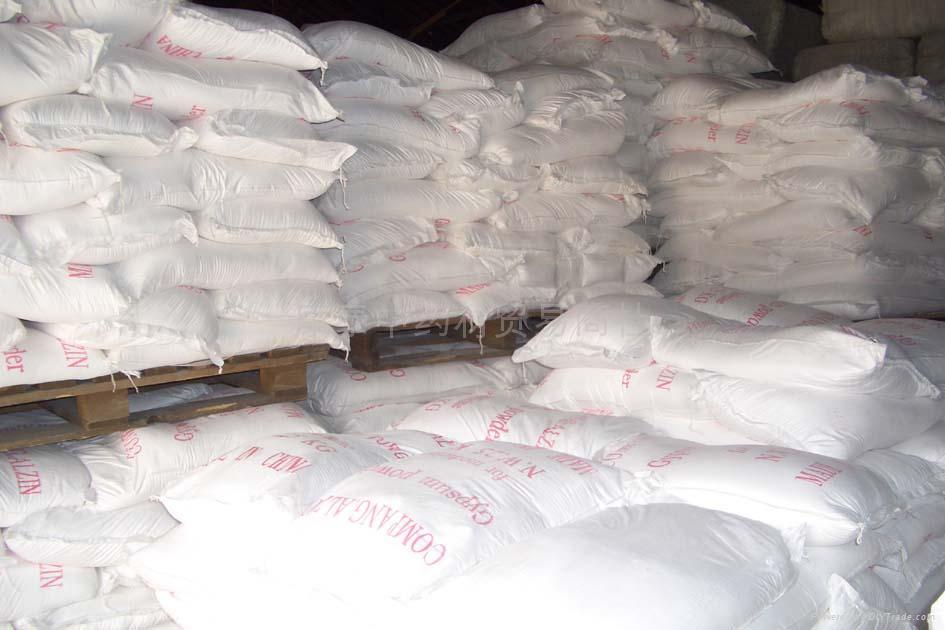 Gypsum Powder 1