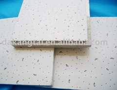 Mineral Fiber Ceiling B